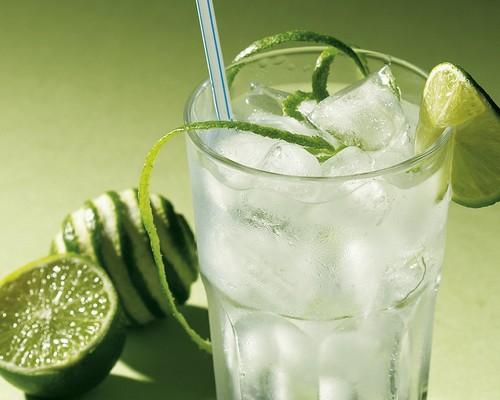 Джин (алкогольный напиток)