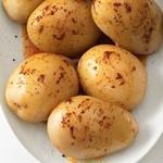 Молодой картофель, вареный в мундире