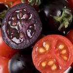 Фиолетовые помидоры помогут предотвратить рак