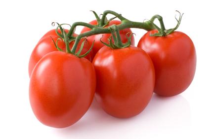 помидор сливка фото