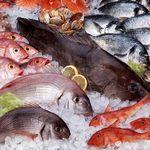 Как покупать свежую рыбу и морепродукты
