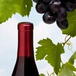 Вино Мальбек
