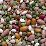 Польза бобовых культур