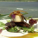 Японский желтохвост с запеченными с имбирем грибами шиитаке и соусом винегрет с корневым пивом и хойсин