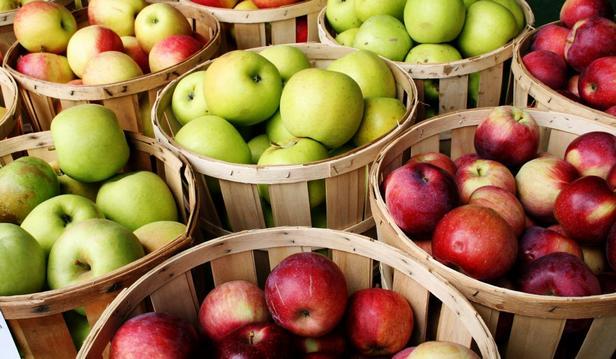Сорта импортных яблок и их отличительные особенности