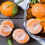 Мандарины, сорта, гибриды и полезные свойства