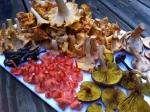 осенний сбор грибов