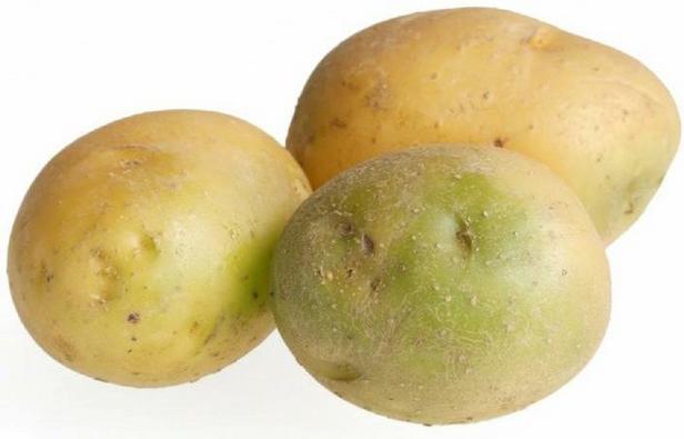 Какой яд в зеленой картошке