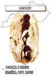 хот-дог с сосиской в беконе, индейкой, соусом морне