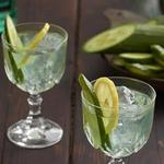 Традиционный коктейль зеленая фея