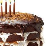 Торт Смор