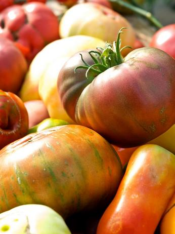 Фото - Наследственные помидоры