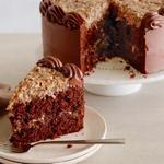 Шоколадный торт «Герман»