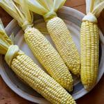 Кукуруза в початках в духовке