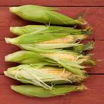50 рецептов со свежей кукурузой