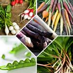 Свежие весенние овощи